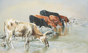 Erna-Wade.Nguni-at-TUGELA.Oil.png