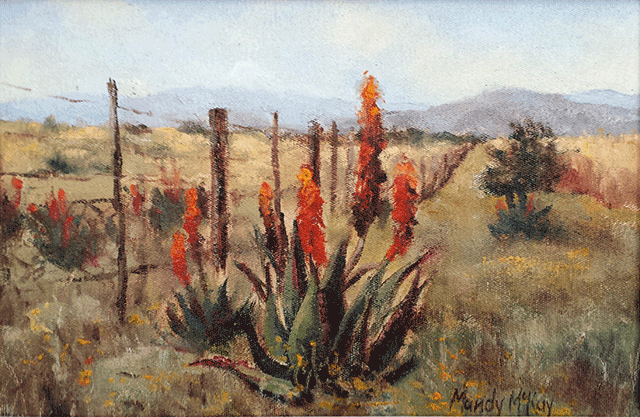 Mandy-McKay---Aloes-near-Grahamstown.png