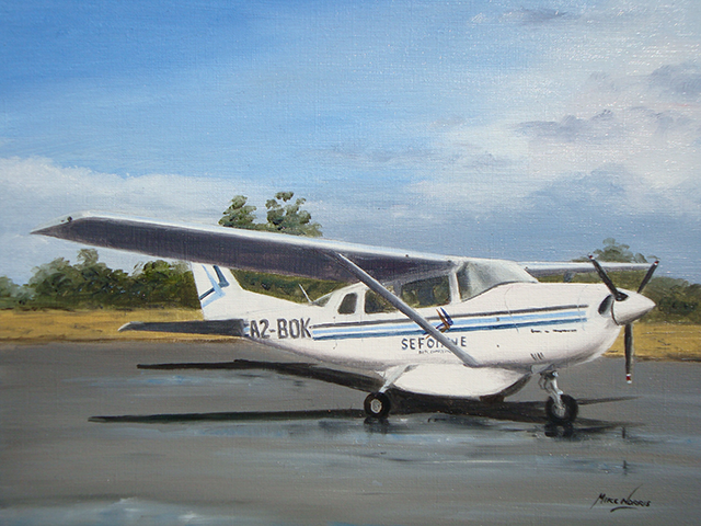 Mike Norris - Cessna 210 .png