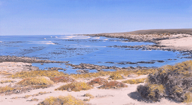 Mike-Norris---72.-Namaqualand-National-Park-(1).png