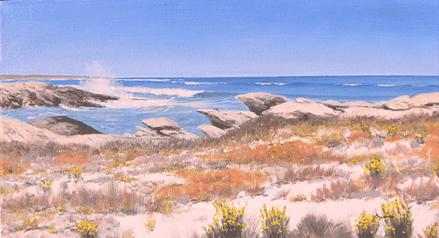 Mike-Norris---73.-Namaqualand-National-Park-(2).png