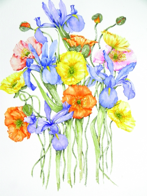 Pg 1 - Janet Bester Spaun - Iris and Poppies_640x480_100quality_26.10.2014.jpg
