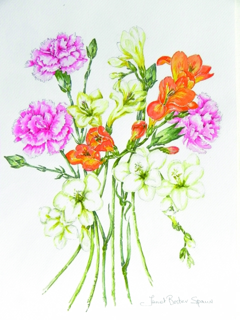 Pg 2 - Janet Bester Spaun - Carnations and Freesias_640x480_100quality_26.10.2014.jpg