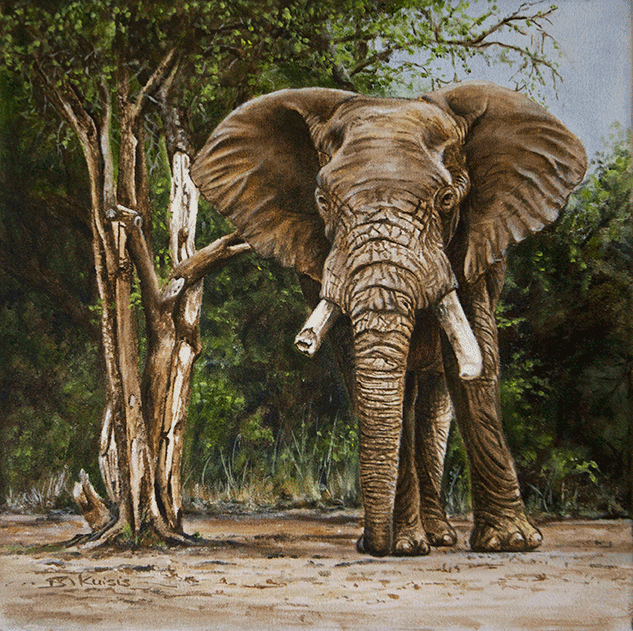 Sharon-Kuisis---Elephant-in-African-Bush-Oils-on-canvas---300-x-300-_MG_1908.png